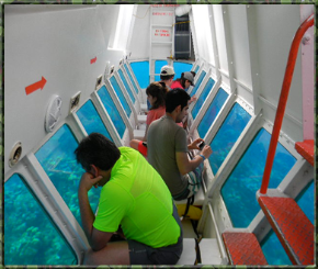 Tour of Roatan and Glass Bottom Boat